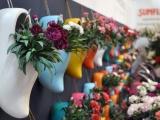 Выставка «Цветы Экспо». Миллион алых роз