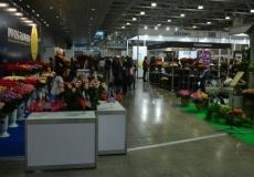 Старт «Цветы Экспо 2014»