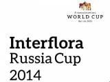 Interflora Russia Cup ждет!
