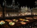 Брюссель / ковёр из 600 000 цветов