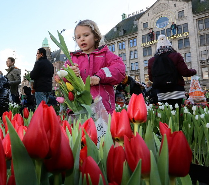 1 a Nationale Tulpendag - WEB 7