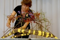 World Florist Competition. Ждем победы!