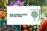 RHS Flower Show Tatton Park 2016