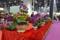 FlowerExpoChina 2019 в Гуанчжоу